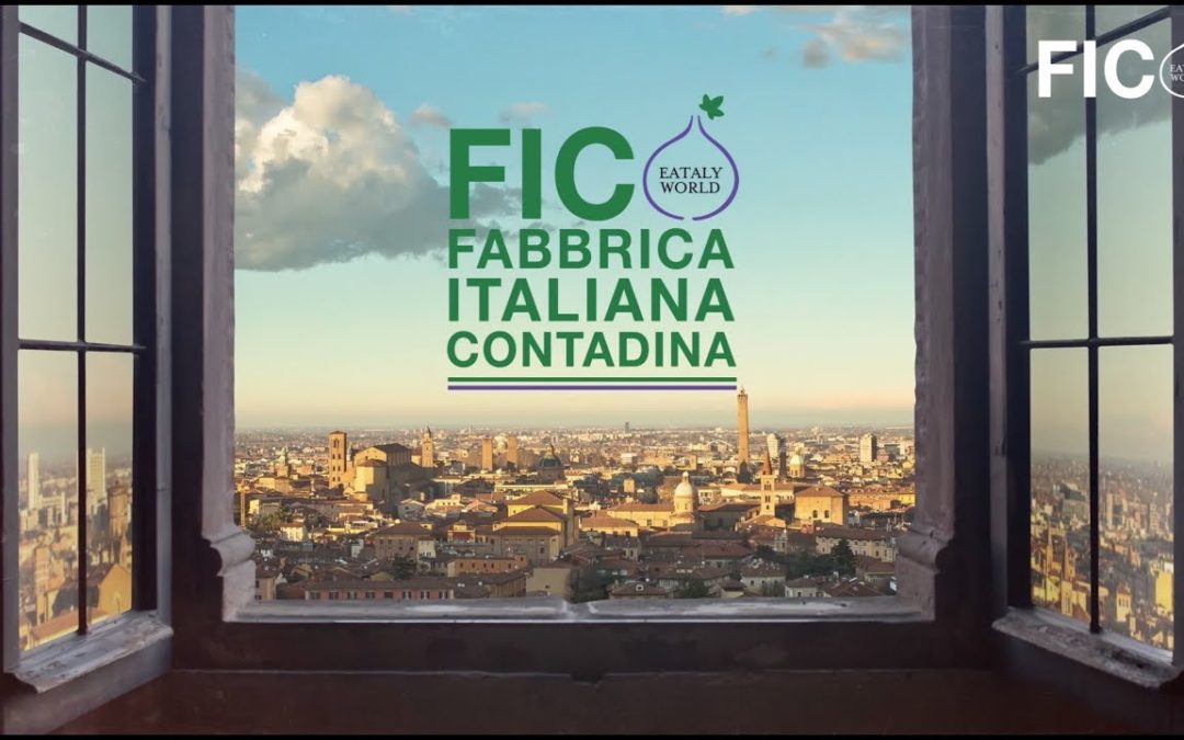 #FICO OPENING